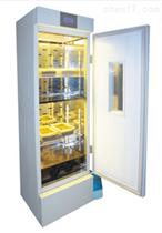 冷光源人工氣候箱