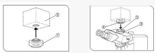 """3.调节显微镜,观察目镜视野中的显微图象直至清晰,然后看显示屏中的图象是否清楚,如果目镜观察与数码显示不同步,先拧松指示为""""LOCK""""的螺丝,再上下调节指示为""""Focus""""的螺丝,直到视频图象清晰,最后拧紧指示为""""LOCK""""的螺丝,这样就可以保证眼睛观察与视频显示基本同步了。 在特殊情况下,无论如何调节""""Focus""""的螺丝的位置,都不能使眼睛观察与视频显示同步,请与当地经销商联系,或电话咨询:020-3825"""