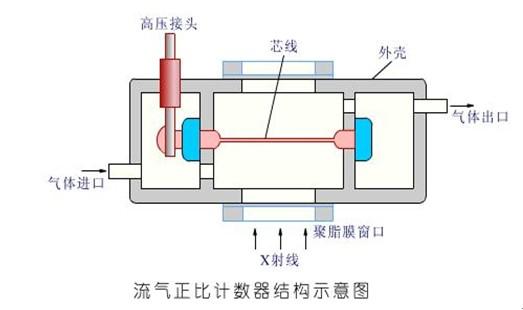 闪烁计数器由闪烁晶体和光电倍增管组成.