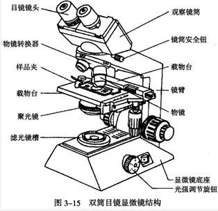 生物显微镜结构