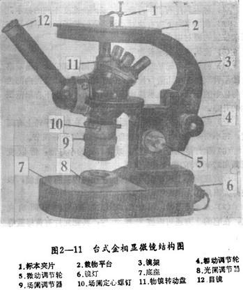 台式金相显微镜