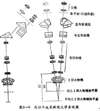 体视显微镜光学系统图