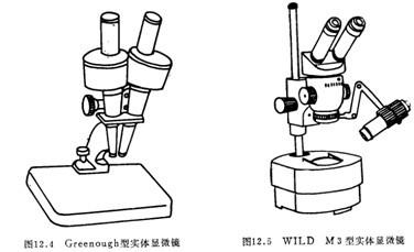 生物显微镜介绍
