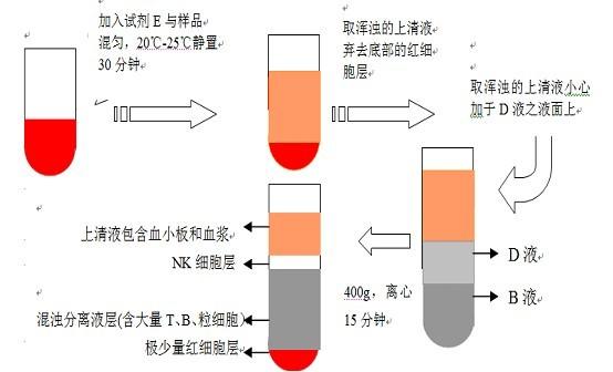 nk细胞分离试剂盒操作说明