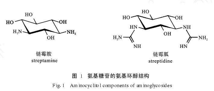 氨基糖苷类抗生素的结构
