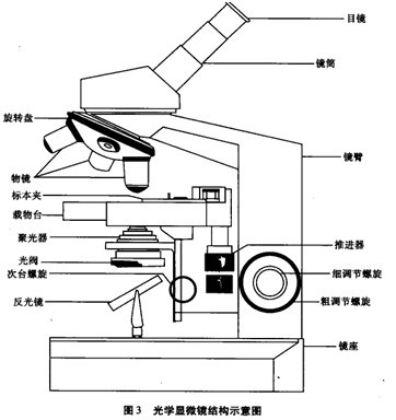 生物显微镜(油镜)的使用与维护